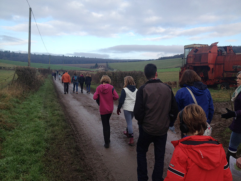 New Years Eve Family Walk, A Group Microadventure!