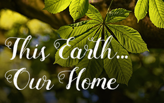 This Earth: Our Home