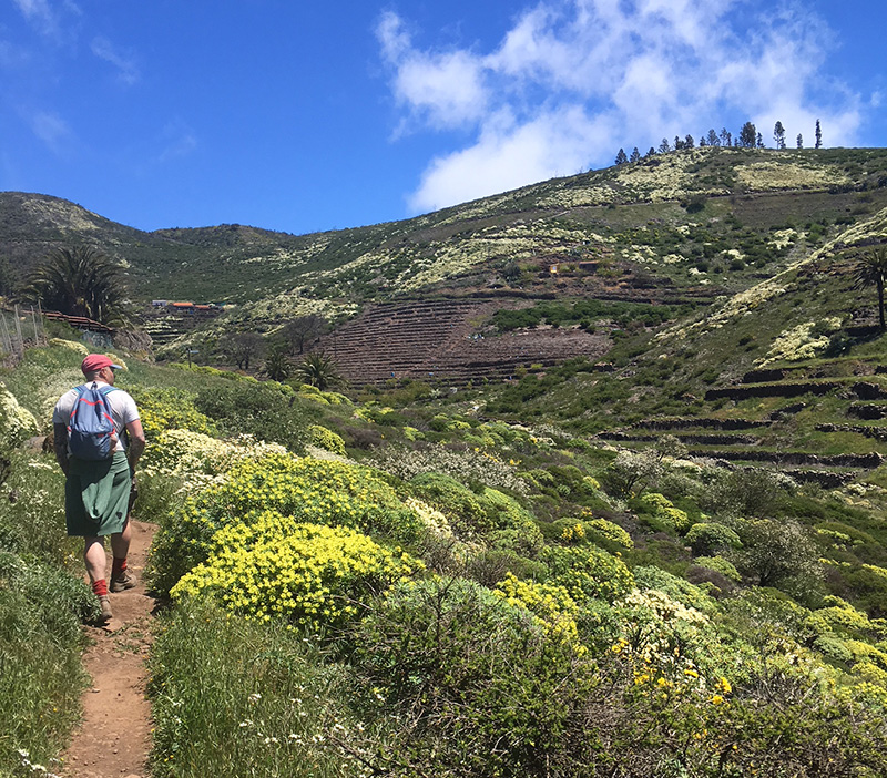 Hiking La Gomera