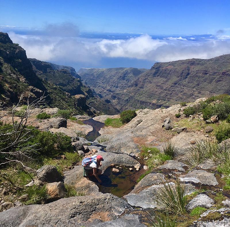 Stream in the mountains, La Gomera