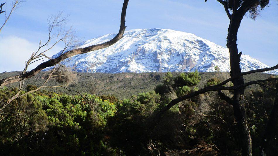 Kilimanjaro - on the way