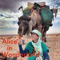 Alice in Wanderland Podcast